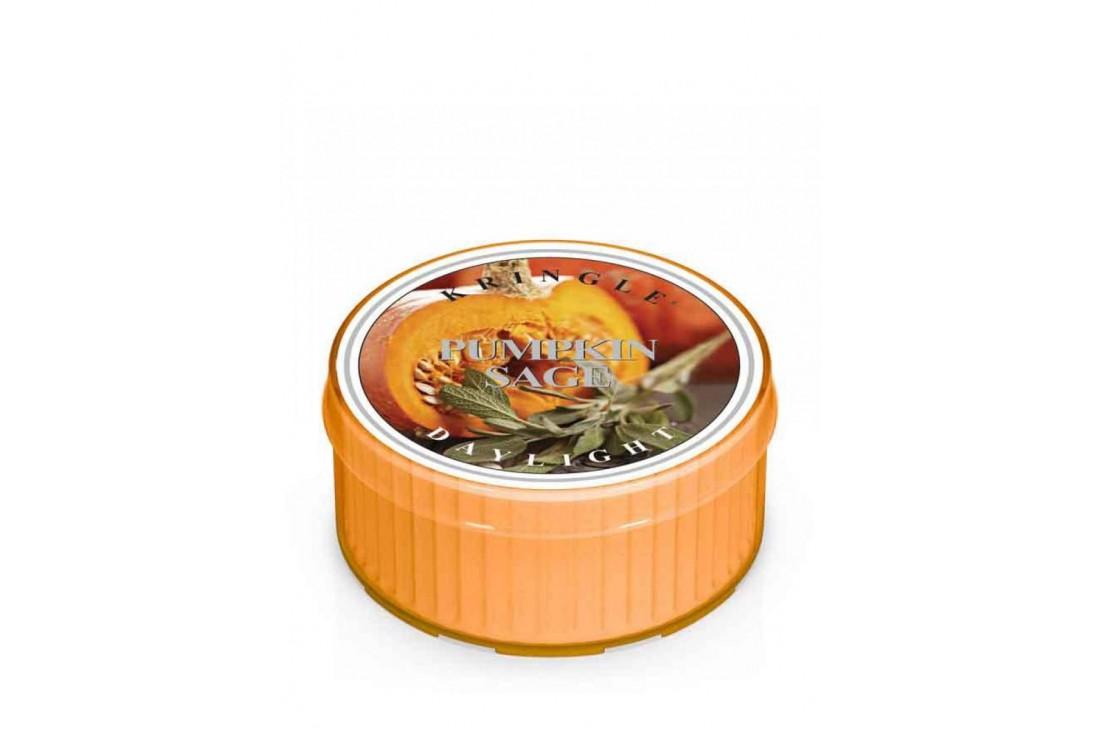 Kringle Candle Pumpkin Sage Świeczka Zapachowa, Daylight