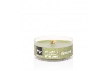 Woodwick Evergreen Świeca Petite